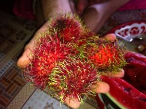 le fruit vietnamien qui ressemble à un oursin
